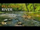 4K Relaxing River Ultra HD Nature Video Water Stream Birdsong Sounds Sleep Study Meditate