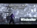 Stamina Sorcerer PvE Build Windwalker - Morrowind ESO