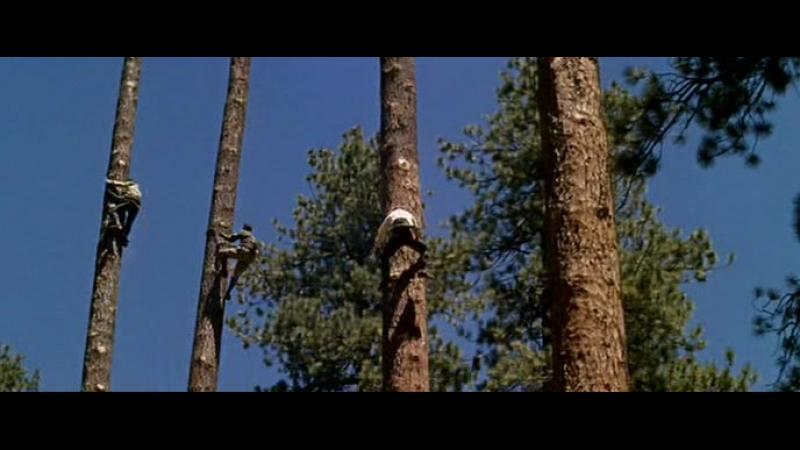 Развлечение американских лесорубов Джон Уэйн