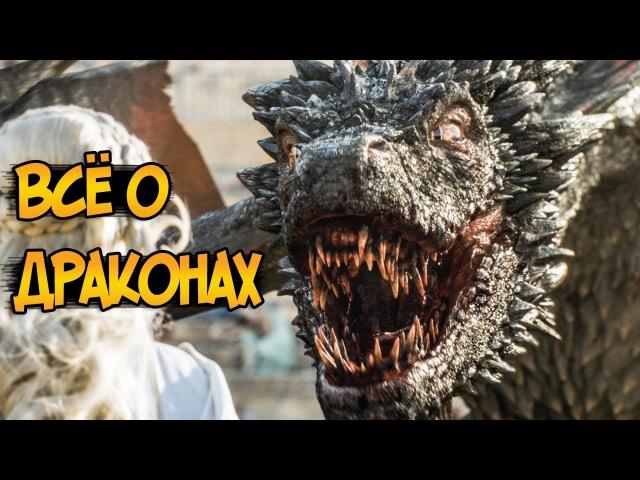 Драконы из сериала Игра Престолов биология питание появление отношение к человеку