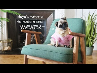 Maya's Tutorial to make a COOL sweater.