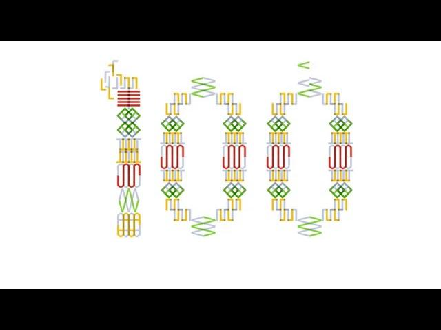 Lietuvos valstybės atkūrimo šimtmečio logotipo pristatymas