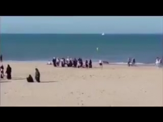 When two dogs chase away a large group of hijabs from the beach.
