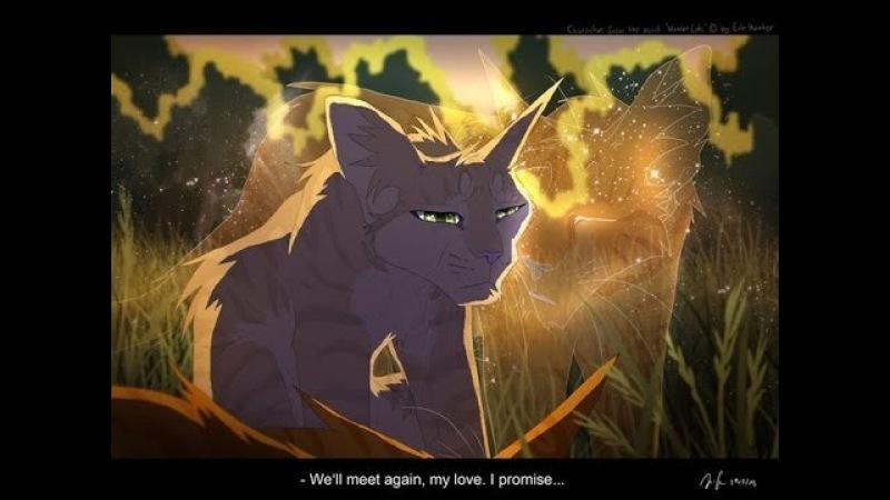 Warriors cats Коты воители Песчаная Буря и Огнезвёзд Ключи от рая