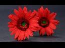 Paper Flowers - Duplex Paper Gerbera Daisy Flower Craft