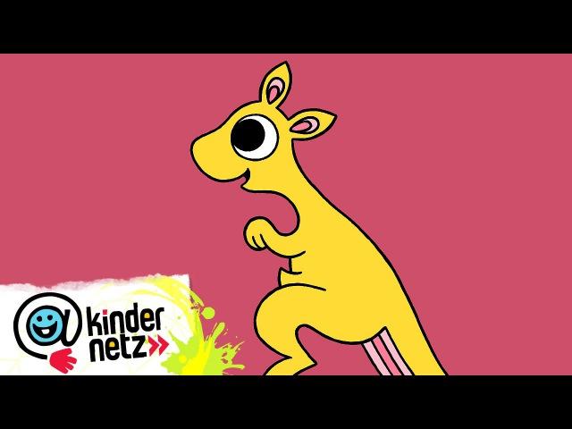 Känguru   Ich kenne ein Tier   SWR Kindernetz