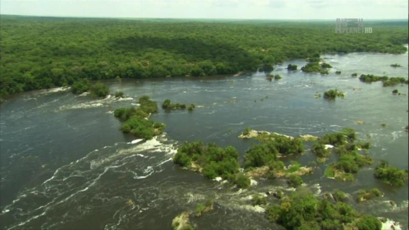 В дебрях Африки 6 серия Нил Африканская одиссея