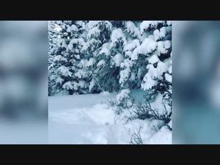 Нарезки видео №35
