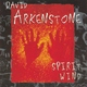 David Arkenstone - Continue To Be
