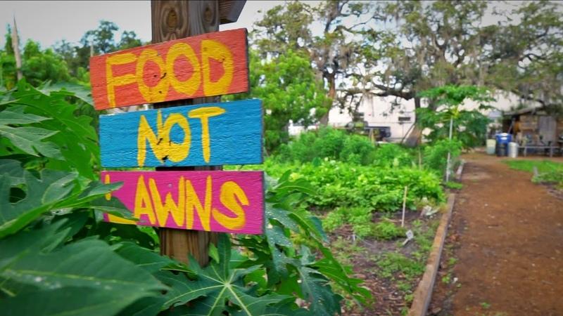 Tour This 1/4 Acre Urban Food Forest Community Garden: St. Pete EcoVillage
