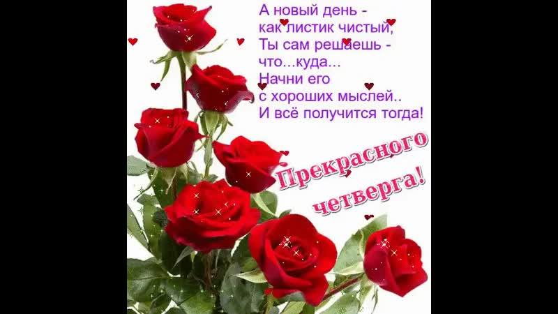 Doc13397022_546876058.mp4