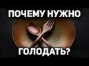 Научные основы лечебного голодания Почему голодать полезно всем