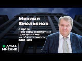 Михаил Емельянов о праве несовершеннолетних преступников на обязательного адвоката