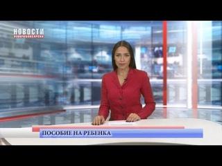 Ежемесячное пособие на ребенка получили 2600 граждан Новочебоксарска