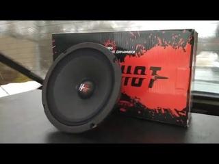 HeadShot M65 - громкие и бюджетные динамики от KICX! обзор и прослушка