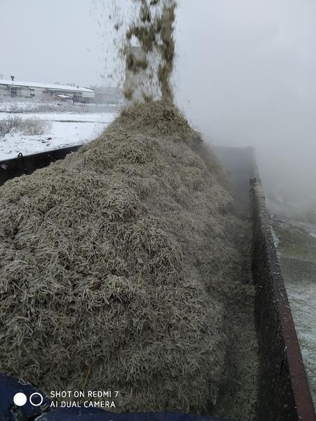 Доставка жома КамАЗ сельхозник 12тонн цена договорная 89625271173