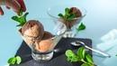 Как приготовить мороженое-суфле без сахара и яиц. ПП-рецепт мороженого на сливках