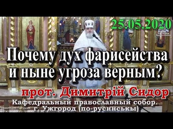 Почему дух фарисейства и ныне угроза верным 25.05.2020, прот. Димитрий Сидор