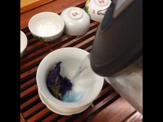 Синий чай Анчан в Заварке