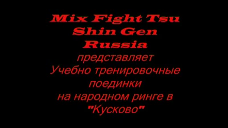 Mix Fight Tsu Shin Gen