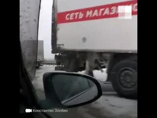Под Тобольском фура протаранила Audi и пассажирский автобус