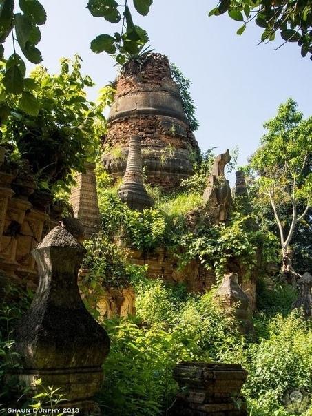 Затерянная храмовая деревня в джунглях Мьянмы. Долина сотни древних пагод