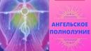 🛑 АНГЕЛЬСКОЕ ПОЛНОЛУНИЕ АНГЕЛЫ ИСЦЕЛЕНИЕ 09 02 2020