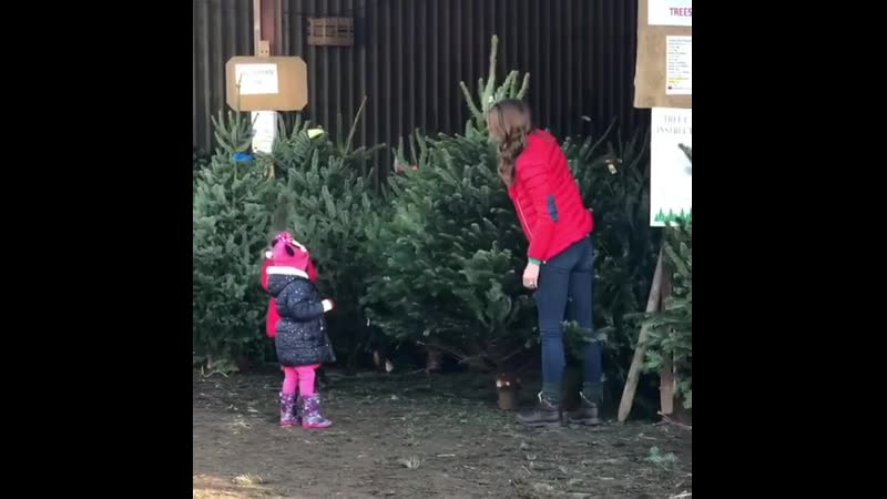 191204 The Duchess of Cambridge helps children pick out Christmas trees