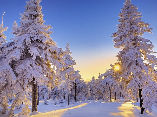 Зимние Обои На Рабочий Стол 1366х768