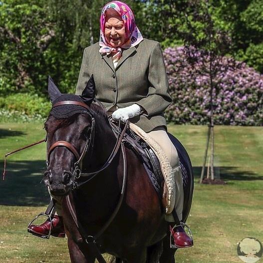 Все еще на коне: 94-летняя королева Елизавета прокатилась верхом