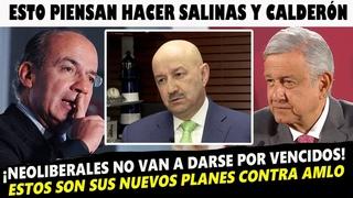 Conoce los nuevos planes de Caldern y Salinas en contra de la 4T Y AMLO