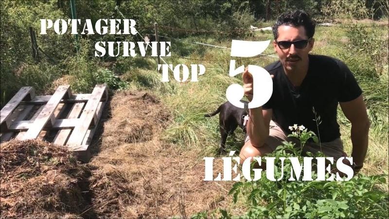 Potager de survie Top 5 légumes