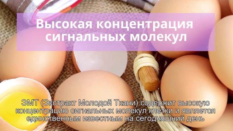 StemRenu от NHT Global обзор RUS SUBS