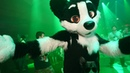 EUROFURENCE 25 OFFICIAL AFTERMOVIE