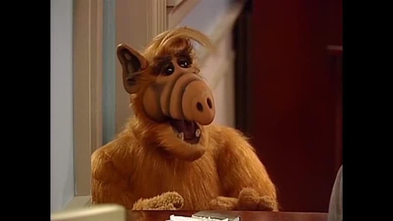 Alf Quote Season 3 Episode 14 На Мелмаке