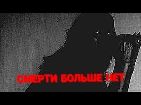 ~СМЕРТИ БОЛЬШЕ НЕТ~ Кленовница КВ