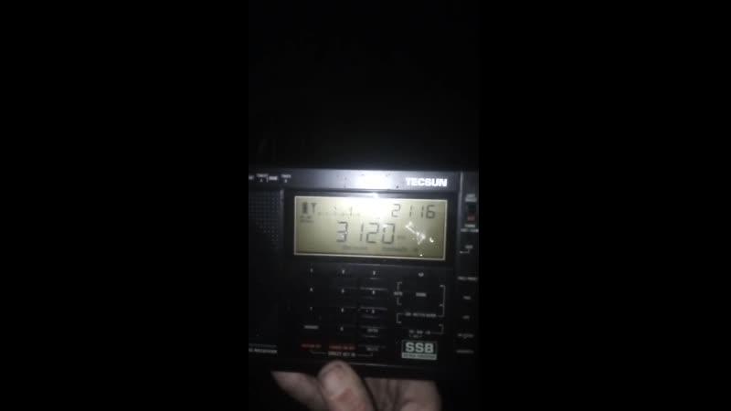 Приём радиохулиганов на Tecsun PL 600