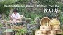 手工制作蒸笼 Bamboo Steamer ,做一餐念念不忘的广东早茶 Yum Cha 丨Dim Sum丨小喜XiaoXi丨Chinese Traditional Crafts