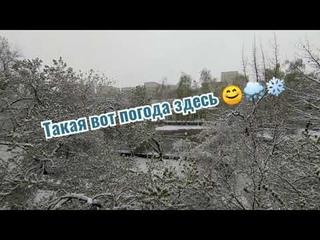 21 и 22 апреля 2021 в Алматы 🙈🌨️ Опять похолодало. Бррр ❄️😊
