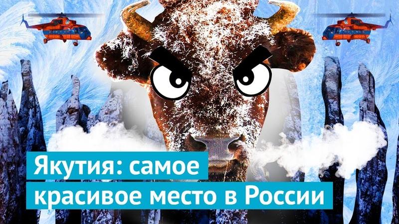Якутия на вертолете к Ленским столбам и бизонам