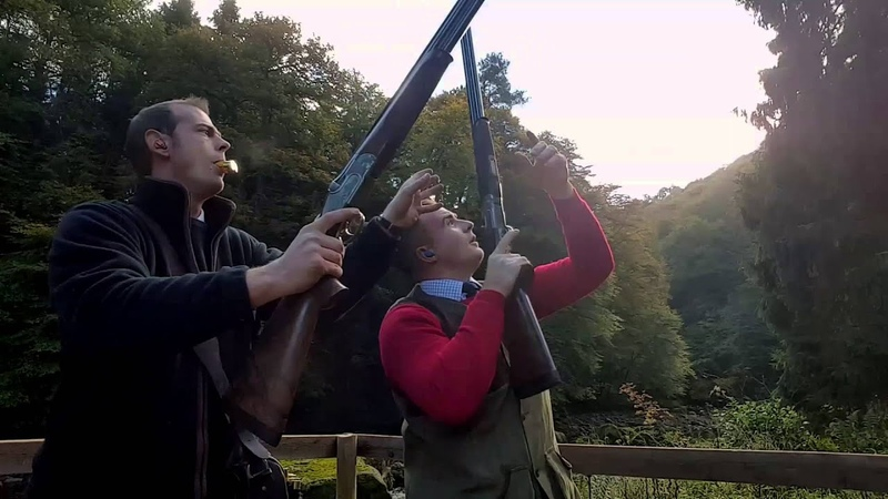 Double Gunning Whitfield pheasants