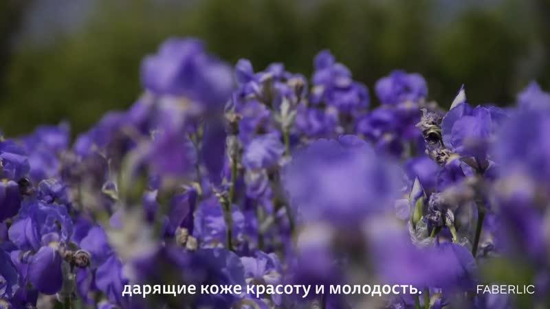Bloom и Сати Казанова_ полное видео