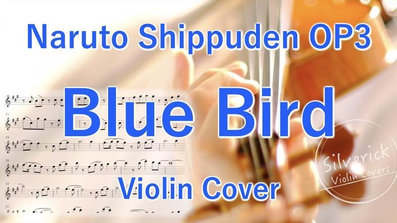 """Blue Bird"""" Naruto Shippuden OP3 Violin Cover"""