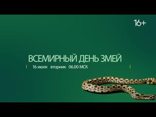 Всемирный день змей | National Geographic WILD