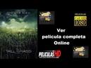 En la hierba alta | Trailer Subtitulado | Pelicula completa