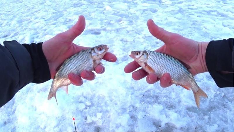 Открыл и закрыл сезон в один день Рыбалка на поплавок в Микулино и закрытие сезона в Карабаше
