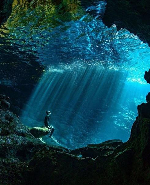 Солнечные ванны в водах Полинезии (Тонга)