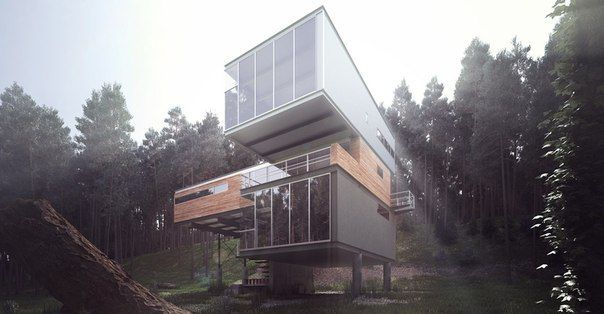Modern Cabin In The Forest - Wonder Vision