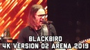 Alter Bridge Blackbird 4K version LIVE O2 Arena London 2019