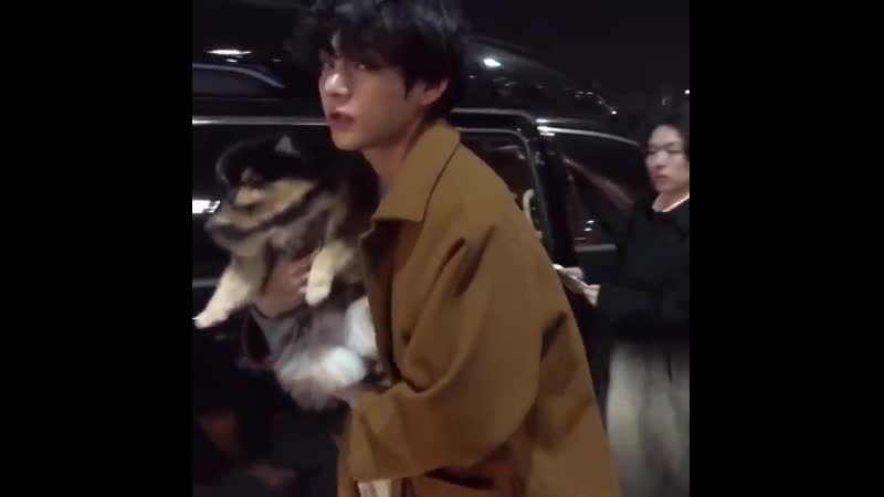 Curly-haired guy and yeontan 🐶